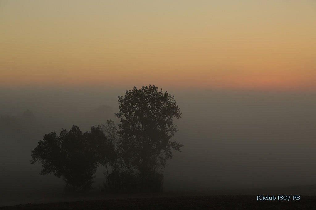 Petit matin d'automne