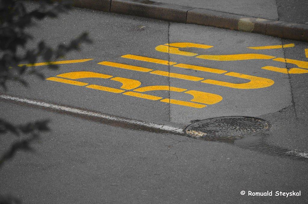 Bus-jaune.jpg