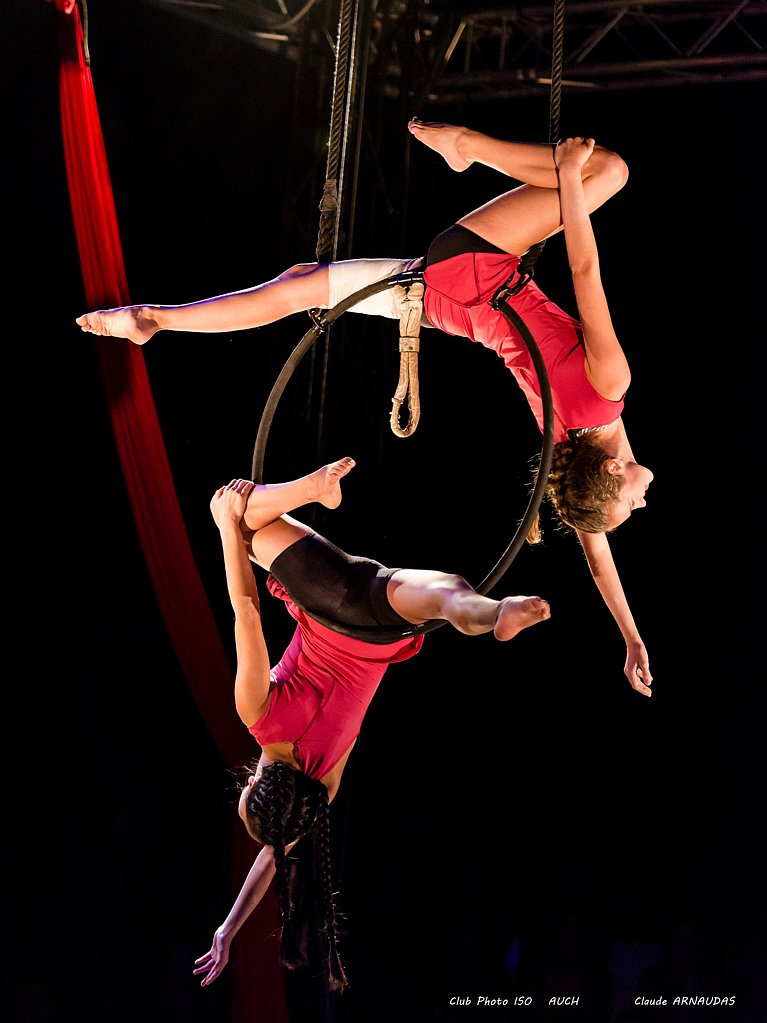 Les écoles du cirque