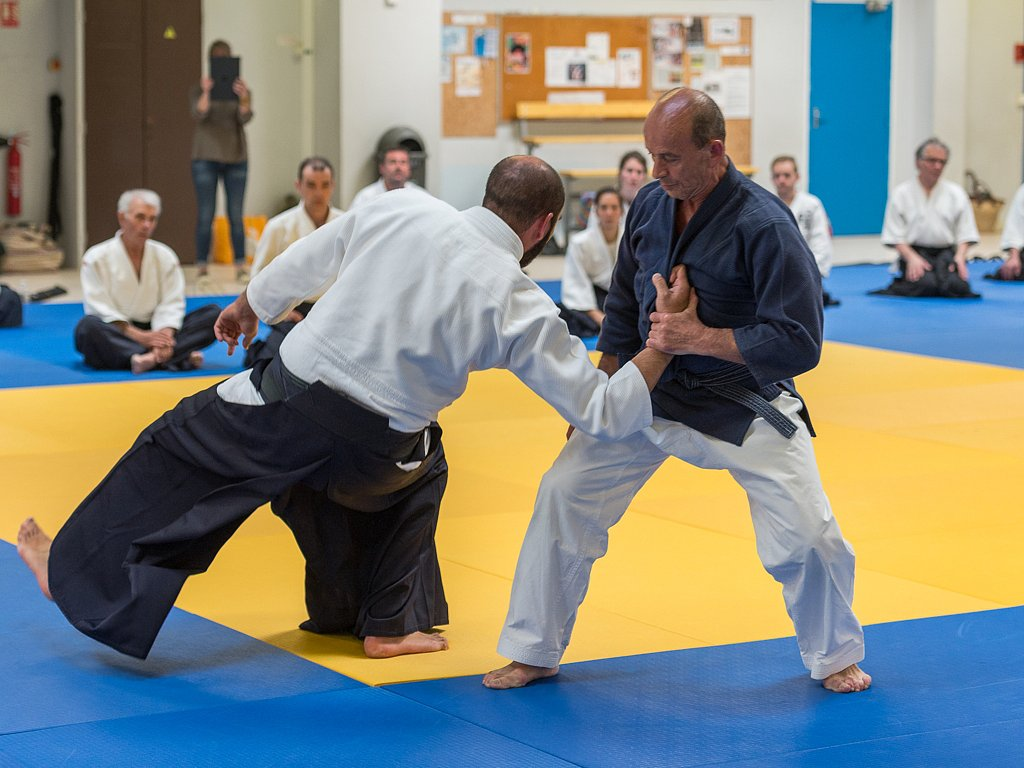Le maitre d'Aikido
